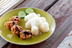 Karaage, Fried chicken japanese style wtih rice. Fun food for kids - cute bear shaped rice on wooden table stock image