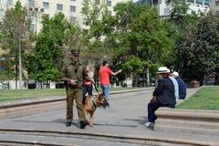 Karabiner-a dog on the street of Santiago. Royalty Free Stock Photos