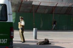 Karabiner on the street of Santiago Royalty Free Stock Photo