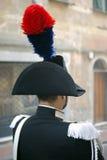 karabinier Obrazy Royalty Free