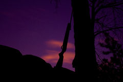 Karabinowy opierać przeciw drzewu Zdjęcie Royalty Free