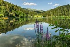 Karagol (Black Lake), Artvin Stock Images