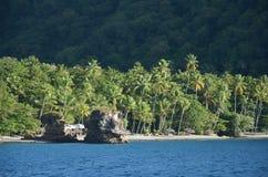 Karaibscy naturalni sen plaży drzewka palmowe zbliżają St Lucia fotografia royalty free