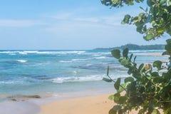 Karaibski Costa Rica oceanu wody plaży raju wakacje drzew las tropikalny Piękny Zdjęcia Stock