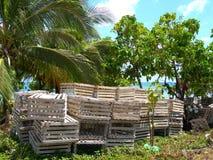 karaibskiego homara Nicaragua wiejscy oklepowie Obrazy Royalty Free