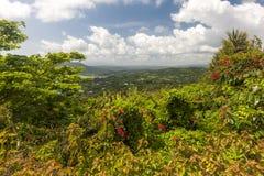 Karaiby plaża na północnym wybrzeżu Jamajka Obraz Stock