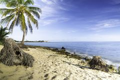 Karaiby plaża tęsk ujawnienie zdjęcia royalty free