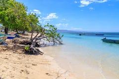 Karaiby plaża w Małej Tropikalnej wiosce rybackiej czyste wody na łodzi drzewo pola niebieskie niebo republika dominikańska zdjęcia stock