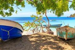 Karaiby plaża w Małej Tropikalnej wiosce rybackiej czyste wody na łodzi drzewo pola niebieskie niebo republika dominikańska obraz royalty free