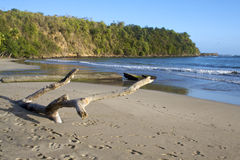 Karaiby plaża Obrazy Royalty Free