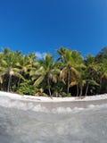 Karaiby plaża od wody St John Fotografia Stock
