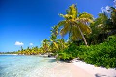 Karaiby plaża Zdjęcia Royalty Free