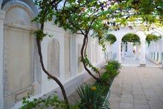 Karaite kenassas的葡萄庭院 叶夫帕托里亚 库存照片