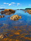 Karaka Bay Royalty Free Stock Images