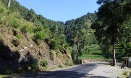 Karakar passerandeflugsmälla Pakistan Fotografering för Bildbyråer