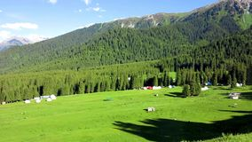 Karakol Glen Defile. Snow capped mountains forest with yurt camp and blue sky background clouds stock footage