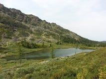 Karakol jeziora w Altai górach 2014 Obraz Stock