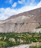 Karakoram Mountain Range in Summer. View of the Karakoram Highway Mountain Range and the Tree-Lined along the Highway in Summer Royalty Free Stock Image