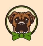 Karakter van de hond het hoofdmascotte in vlinderdas Stock Fotografie