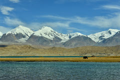 Karakul lake and Muztagh Ata Stock Photo