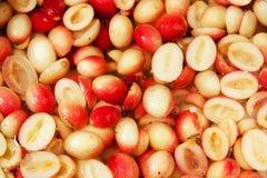 Karanda herbal fruit in pickle fermented Royalty Free Stock Image