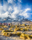 Karanga, Kibo, Kilimanjaro park narodowy, Tanzania, Afryka Obrazy Stock