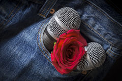 Karaoke, piosenkarz, zespół rockowy/ Zdjęcia Stock
