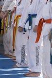 Karaté Imagem de Stock