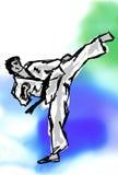 KARATÉ, COUP-DE-PIED élevé du Taekwondo Image stock