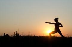 Karaté sur le coucher du soleil. photographie stock libre de droits