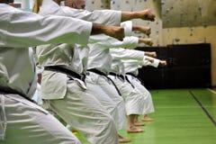 Karaté d'arts martiaux   Photo libre de droits
