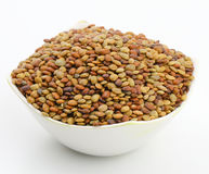 Karat seeds. Karat or kalat indian tropical seed isolate on white Royalty Free Stock Photography