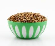 Karat seeds Royalty Free Stock Photos