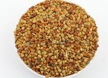 Karat seeds Royalty Free Stock Images