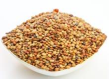 Karat seeds Stock Photo