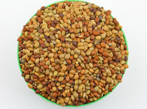 Karat seeds. Karat or kalat indian tropical seed isolate on white Stock Photography