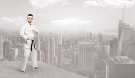 Karate άτομο που κάνει karate τα τεχνάσματα στην κορυφή μιας μητροπολιτικής πόλης Στοκ εικόνες με δικαίωμα ελεύθερης χρήσης