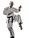 Karate άτομο στοκ εικόνες