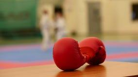 Karate γάντια στο tatami κατάρτισης, de-στραμμένο απόθεμα βίντεο