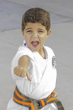Karate διάτρηση 2 Στοκ Φωτογραφίες