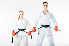 karate μαχητές που κρατούν τις μαύρες ζώνες και που εξετάζουν τη κάμερα στοκ φωτογραφία με δικαίωμα ελεύθερης χρήσης