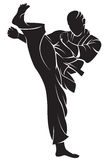 Karate μαχητής διανυσματική απεικόνιση