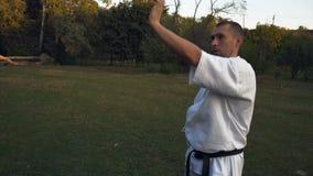Karate ο επαγγελματίας ένα άτομο στο κιμονό εκτελεί το kata νωρίς το πρωί στο ξέφωτο στο πάρκο πόλεων φιλμ μικρού μήκους