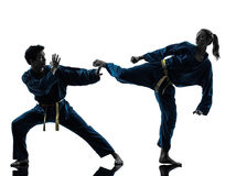 Karate σκιαγραφία ζευγών γυναικών ανδρών πολεμικών τεχνών vietvodao Στοκ φωτογραφία με δικαίωμα ελεύθερης χρήσης