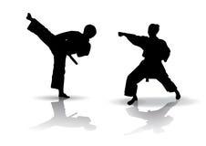 karate σκιαγραφία διανυσματική απεικόνιση