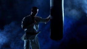 Karate σκιαγραφιών άσκηση ατόμων sandbag επάνω απόθεμα βίντεο