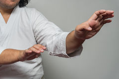 Karate στάση ατόμων στη φρουρά από το φοίνικα Στοκ Εικόνες