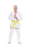 karate το άτομο θέτει Στοκ εικόνες με δικαίωμα ελεύθερης χρήσης