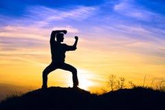 karate Zdjęcie Stock
