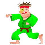 Karate Royalty Free Stock Photo